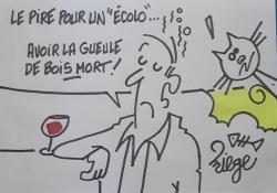 """Dédié aux """"khmaires verts !"""