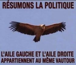 La politique ?