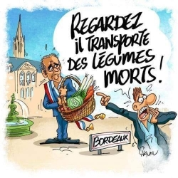 """Scandaleux """"khmaire vert"""" de Bordeaux !"""