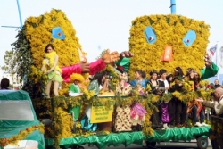 Autres Carnavals en France...