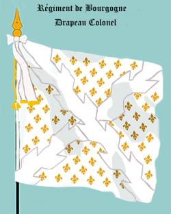 Régiment de Bourgogne, Drapeau colonel