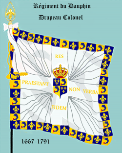 Régiment du Dauphin, Drapeau colonel