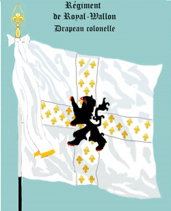 Royal Wallon, Drapeau colonel