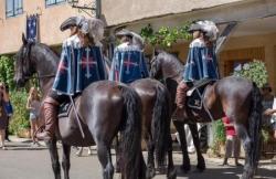 La cavalerie, les cavaleries... (I)