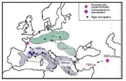 Il y a 5.000 ans : le néolithique...