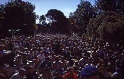 La foule de Montmajour
