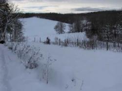 Le potager sous la neige/Janvier 06