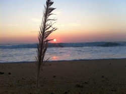 Hossegor, coucher de soleil