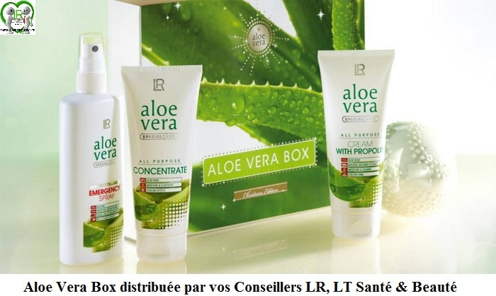 aloe vera de l r les 3 produits indispensables de la maison lt activitevdi. Black Bedroom Furniture Sets. Home Design Ideas
