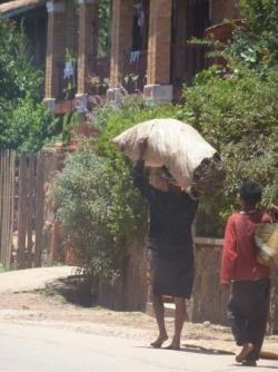 transport du charbon de bois