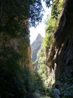 un canyon de verdure