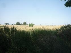 espace entre les choses, le ciel-les champs