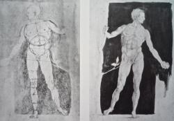 07 Albrecht Dürer étude 1504.jpg