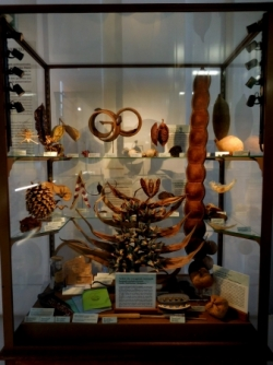Galerie de Botanique
