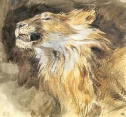 Delacroix lion