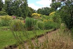 Lundi 29 juin Jardin botanique