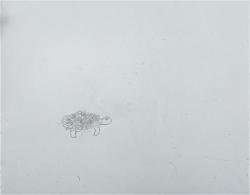Madeleine tortue - 33.jpg
