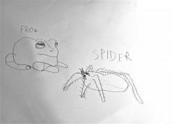 Logan grenouille et migale.jpg