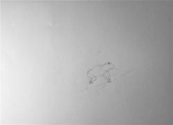 Madeleine grenouille.jpg