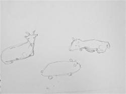 Fleur chèvre naine - 11.jpg