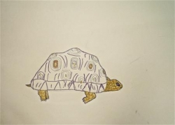 Jade tortue continuée - 15.jpg