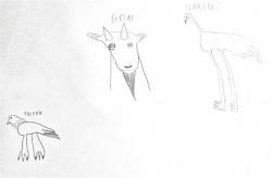 Logan chèvre et flamant.jpg