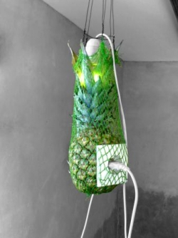 Ananas Elec