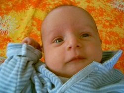 Thomas, 1 mois et demi