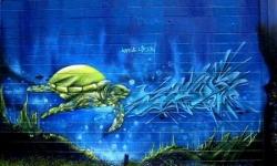 la tortue bleue