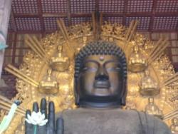 Nara, le Daibutsu... le grand Bouddha