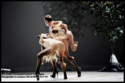 562Ballets de Monte Carlo Kill Bambi par Jeroen Ve