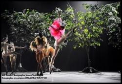 55Ballets de Monte Carlo Kill Bambi par Jeroen Ver