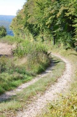 Autre chemin de Bourgogne
