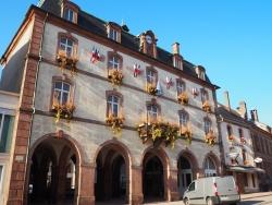 Senones-Châteaux des princes de Salm-Salm