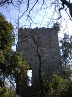 VELNASQUE Castrum de Pibresson