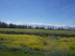 Sur la route de Valpo