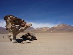Bolivie, instants perdus... mais un peu retrouvés!