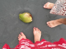Kerala, ses cocotiers, sa mer endiablée, ses rizières