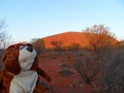 Norbert devant Uluru