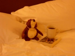 Norbert in London with a cup of tea