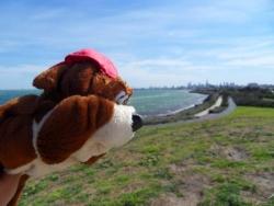 Norbert devant le skyline de Melbourne