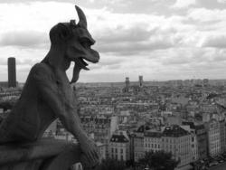 Petit Diable de Notre Dame