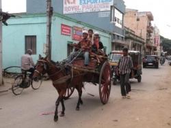 Attelage dans les rues de Mysore