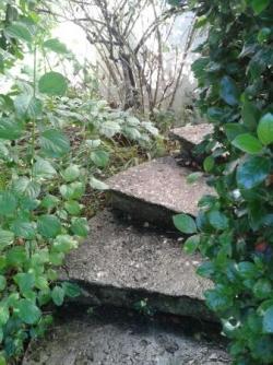 Escalier de gauche