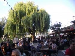 la guinguette de Tours sur Loire !