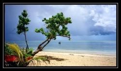 ciel_tropiques.jpg